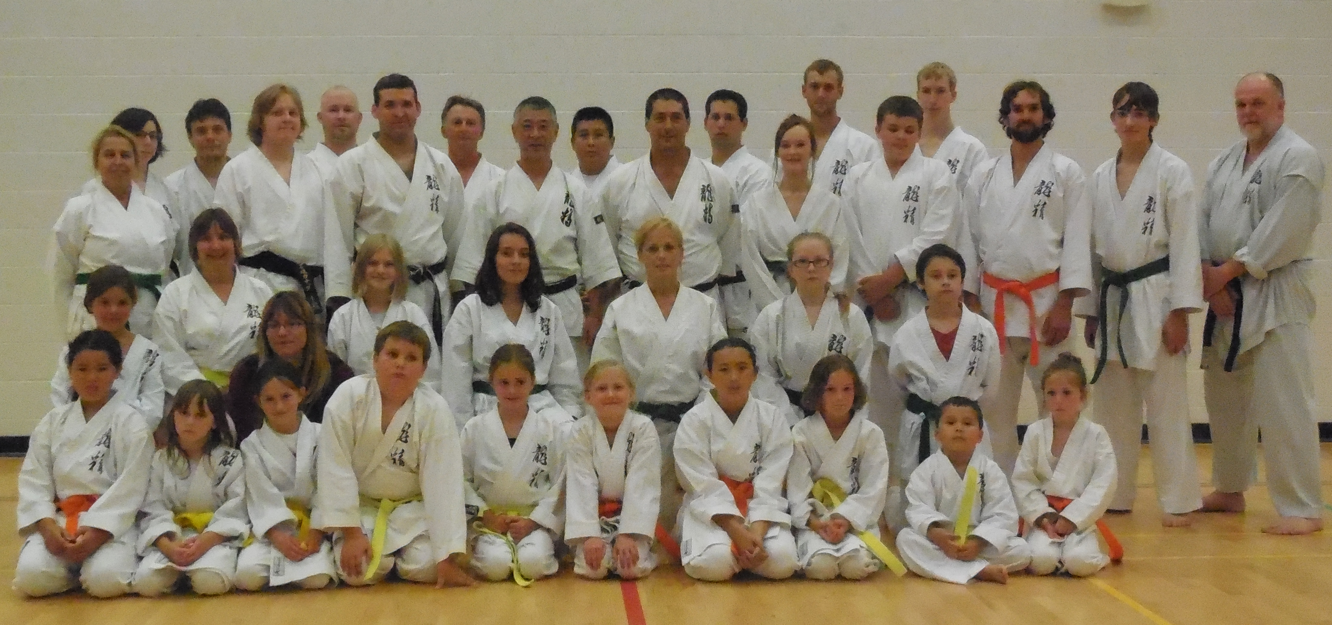 Wiarton and Walkerton students at the Sakamoto-Sensei Clinic held in Walkerton July 8 2014